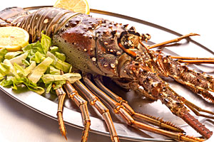 The Greek Lobster